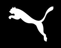 Puma v1.07 Boot Concept