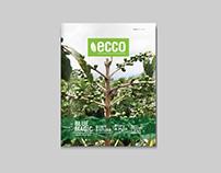 Ecco Magazine Design