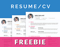 Freebie Smart Resume/CV With Cover Letter