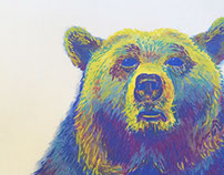 Grizzly Pastels