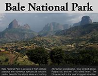 Bale National Park
