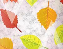 Autumn leaves on marble