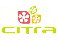 Citra Identity