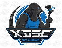 xDSc team logo