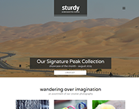 Sturdy Portfolio Website Concept