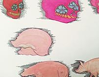 Morphing Skull to pig