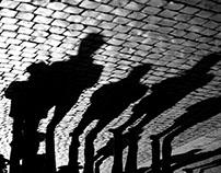 shadows & swans