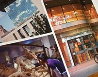 University of Texas Viewbook Marketing Brochure
