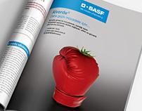 BASF - The Chemical Company // Key Visual Designs