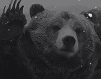 Boombear ─ веб-студия