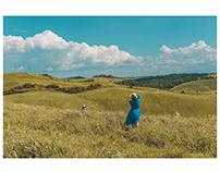 Asciano_Landscapes