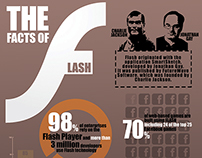 The Facts of Flash - Infographic