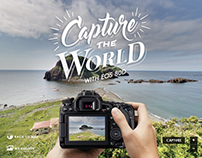 Capture The World