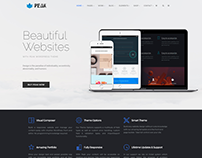Home - Peak WordPress Theme by Visualmodo