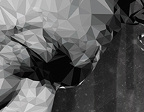 Polygonal Cerati