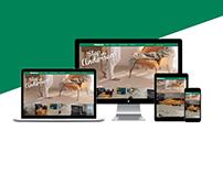 Andersens Website Redesign