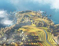 Vietnamese rice fields