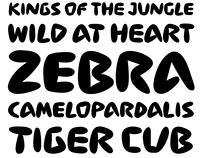 San Diego Zoo Typeface