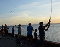 Fishing / Pêche aux maquereaux