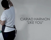 Cariad Harmon - Like You