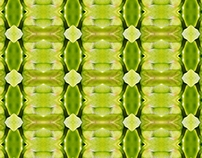 Pattern, lime green basis