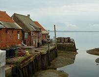 Yerseke - oysters