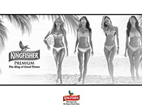 Storyboard Concept for Kingfisher Calendar