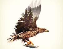 Eagle - Double Exposure Series