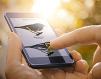 The Warbler App: Technology with a Bird's Eye View