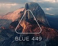 Blue 449