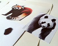 ballpoint pen drawings0011
