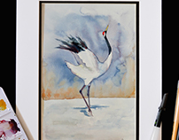 Red Crowned Crane, Watercolour