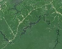 Mamori Lake, Amazonas, Brazil