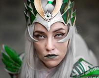 The elves of midgard