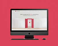 CapitalSuite - Corporate website