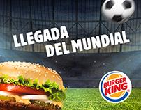 Burger King-FIFA World Cup. Social Media