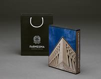 Il Palazzo della Farnesina al Foro Italico