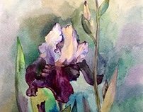 Flowers by watercolor