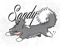 Sandy the dog