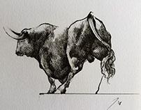 Toro.