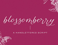 Blossomberry Modern Calligraphy Font