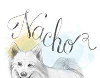 Poster Nacho & Ela