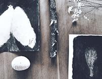 Paintings & Poetry 1 Words by Tetsuhiro Wakabayashi