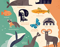 Wild Animals of California