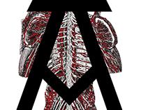Anatoma Uncial