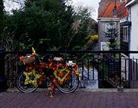 Volendam & Edam 2015