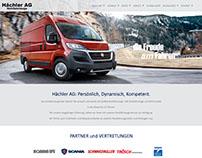 Website design. Strona www