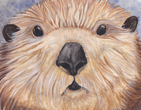 Surprised Otter Illustration