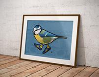 Urban Birds