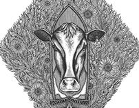 Waikato Heraldry